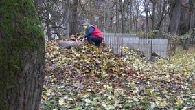 Średniorolna kobieta niesie ciężki workowy pełnego liście i wywala na dużym komposta stosie 4K zbiory wideo