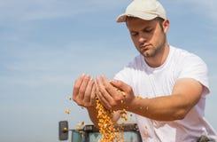 Średniorolna mienie kukurudza obrazy stock