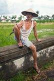 średniorolni ryż Fotografia Royalty Free