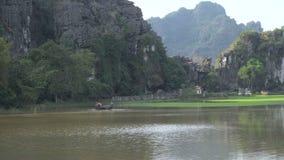 Średniorolny ciągnik kultywuje ryżowego pole zbiory