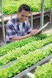 Średniorolny działanie z pastylką w gospodarstwie rolnym obrazy stock