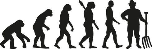 Średniorolny ewolucja wektor royalty ilustracja