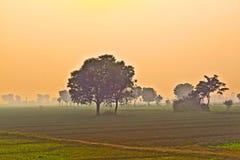 średniorolny mgły budy ranek Fotografia Stock