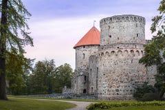 Średniowieczne livonian kasztel ruiny w Cesis zdjęcia stock