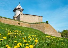 średniowieczny forteca Narva, Estonia, UE zdjęcie stock