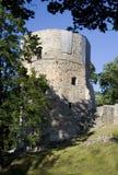 średniowieczny grodowy cesis zdjęcia royalty free