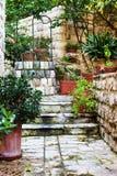 Średniowieczny podwórze z kwiatami obraz stock