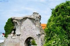 Średniowieczny tydzień 5 zdjęcie royalty free