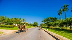 ŚRODKOWA droga KUBA, WRZESIEŃ, - 06, 2015: Koń i Obraz Stock
