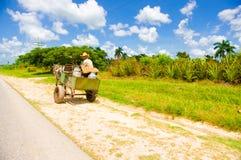 ŚRODKOWA droga KUBA, WRZESIEŃ, - 06, 2015: Koń i Obraz Royalty Free
