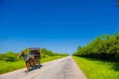 ŚRODKOWA droga KUBA, WRZESIEŃ, - 06, 2015: Koń i fura Zdjęcie Royalty Free