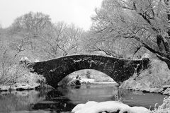 środkowa nyc parka śniegu burza Zdjęcia Royalty Free