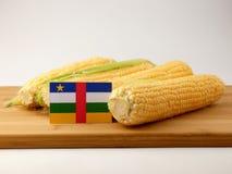 Środkowo-afrykański republiki flaga na drewnianym panelu z kukurydzanym isolat zdjęcie royalty free