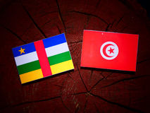 Środkowo-afrykański republiki flaga z tunezyjczyk flaga na drzewnym fiszorku obrazy royalty free