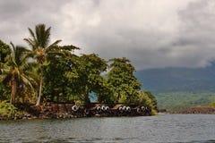 Środkowo-amerykański wysepka Zdjęcia Royalty Free