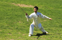 środkowy chi dzień parka qigong tai świat Zdjęcie Royalty Free