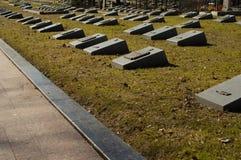 Środkowy cmentarz Białoruś minister Grobowowie żołnierze ww2 książe Obraz Stock