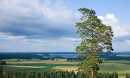 środkowy Finland obrazy stock
