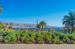 Środkowy okręg Eilat Zdjęcie Stock