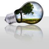 środowisko zdjęcie stock