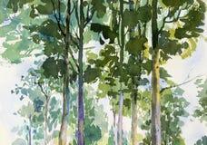 Środowiskowy pojęcie, drzewo w lesie ilustracji