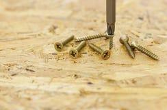 Śruby i śrubokręt Zdjęcie Stock