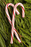 Świąteczna Bożenarodzeniowa Miętowego cukierku trzcina Fotografia Stock