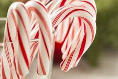 Świąteczna Bożenarodzeniowa Miętowego cukierku trzcina Obrazy Royalty Free