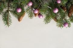 Świąteczne jodeł gałąź dekorować z jedlinowymi rożkami i różowymi piłkami Zdjęcie Stock