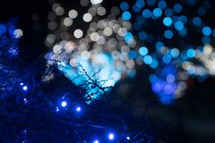 Świąteczni plenerowi światła zdjęcia royalty free