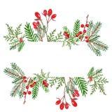 Świąteczny Bożenarodzeniowy sztandar z ręka rysującą akwareli zimą evegreen rośliny i czerwieni jagody ilustracja wektor