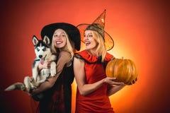Świąteczny Halloween projekt W karnawałowych kostiumach blondynki dwa pięknej kobiety Dwa emocjonalnej młodej kobiety w Halloween obrazy royalty free