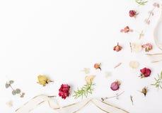 Świąteczny kwiatu skład na białym drewnianym tle Zasięrzutny widok Fotografia Royalty Free