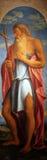 Świątobliwy John baptist obrazy royalty free