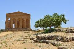 Świątynia Concordia dolina świątynie Agrigento Włochy Fotografia Stock