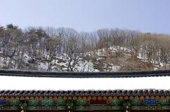 Świątynia dach Obraz Royalty Free
