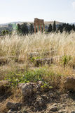 , świątynia Dioscuri, Agrigento, Sicily - Fotografia Stock