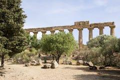 Świątynia Hera, Agrigento, Sicily - Obraz Stock