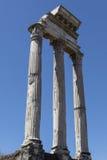 Świątynia Rycynowy, Pollux, Rzym i Włochy - fotografia stock