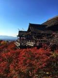 Świątynia w Kyoto z liściem klonowym Obraz Stock
