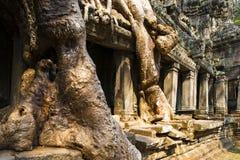Świątynia w drzewach Obrazy Stock