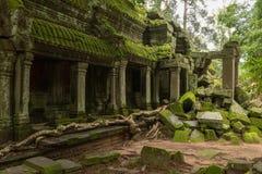 Świątynna kolumnada i spadać skały w dżungli obrazy stock