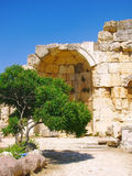 świątynne antyczne ruiny obraz royalty free