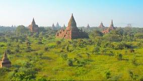 Świątynny kompleks Bagan przy zmierzchem burma zdjęcie wideo