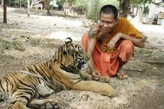 świątynny tygrys Obrazy Royalty Free