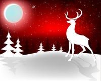 Święta czerwone tło Zdjęcie Stock