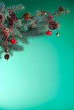 Święta dekorują odznaczenie domowych świeżych pomysłów Fotografia Royalty Free