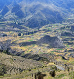 Święta dolina z kultywującymi rolników polami obraz royalty free