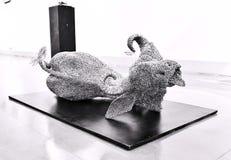 Święta krowa, tradycyjny symbol Indiańska kultura zdjęcia stock