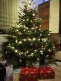 Święta moje portfolio drzewna wersja nosicieli zdjęcia stock